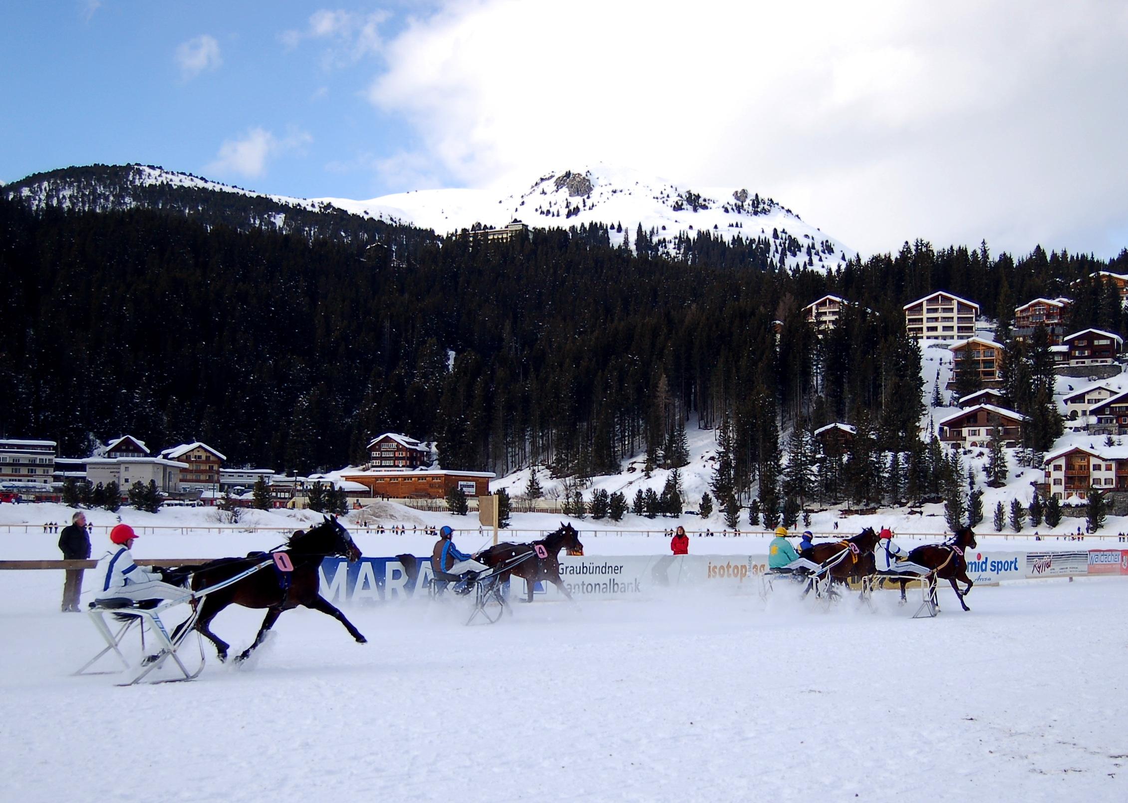 Pferderennen auf Schnee