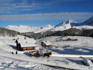 gutes skihotel direkt im skigebiet